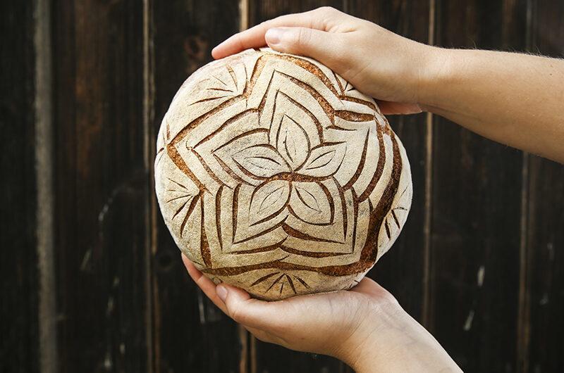 Kruh iz knjige Drožomanija
